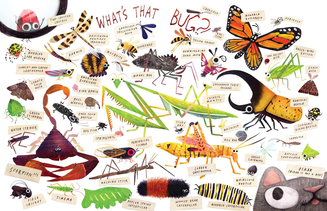 Various types of bugs