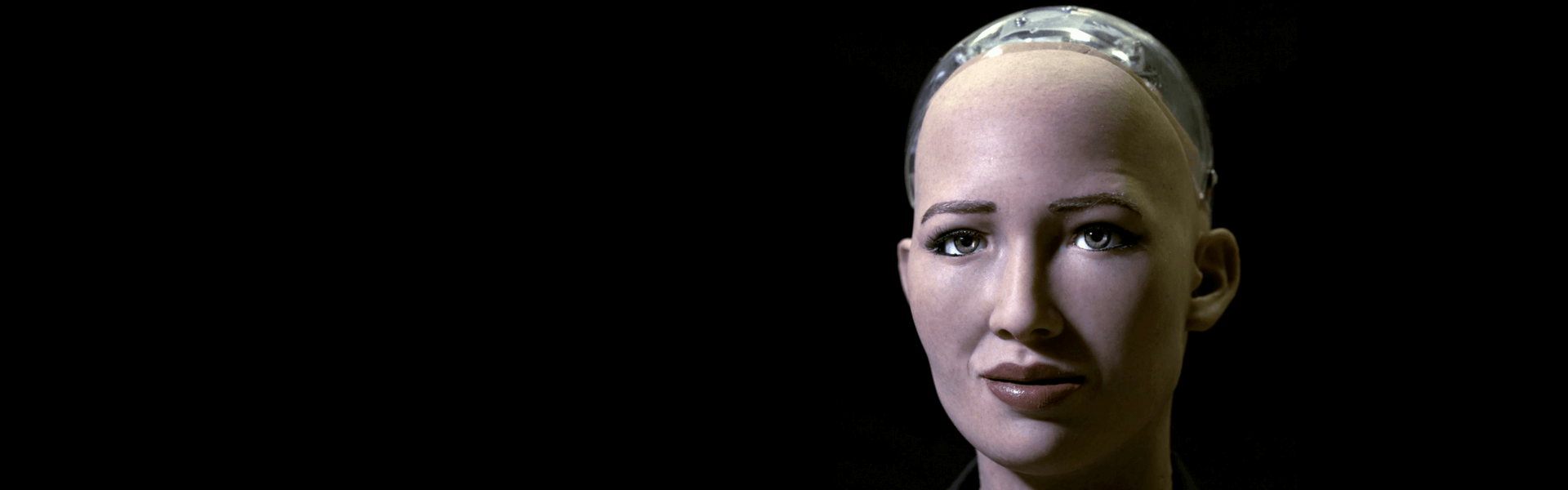 Well, Sophie Is Clever — So What? Does AI Robotics Have Practical Application?
