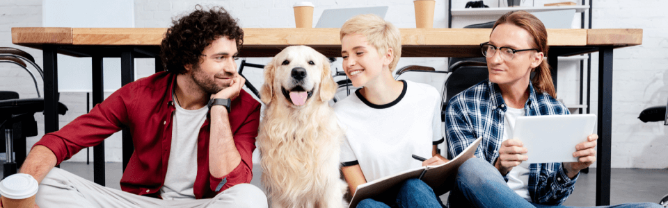 7 Incredible Tech Solutions to Inspire Innovative Pet Startups