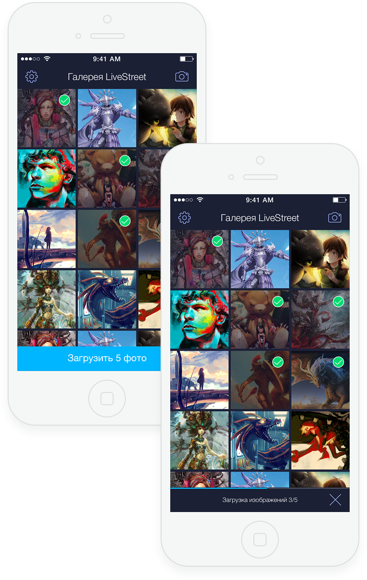 LSGallery for iOS
